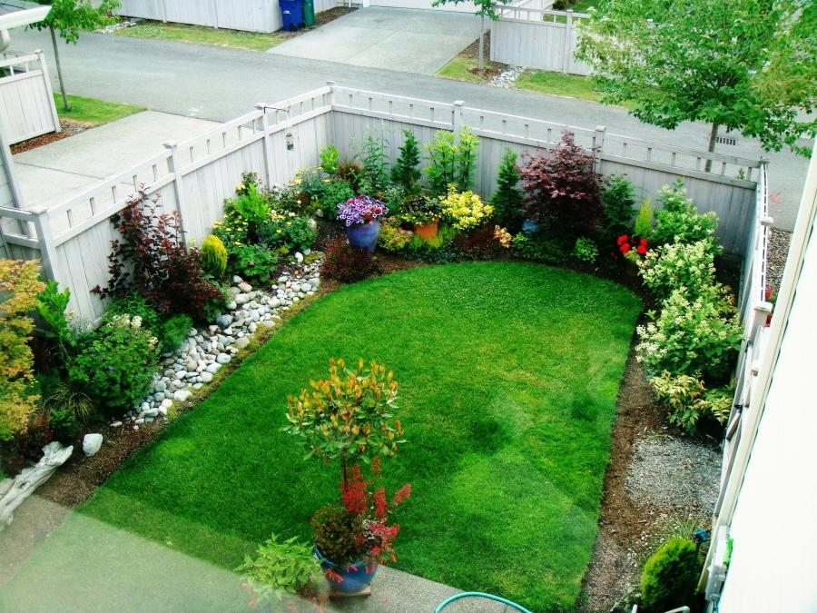 Маленький сад (4)